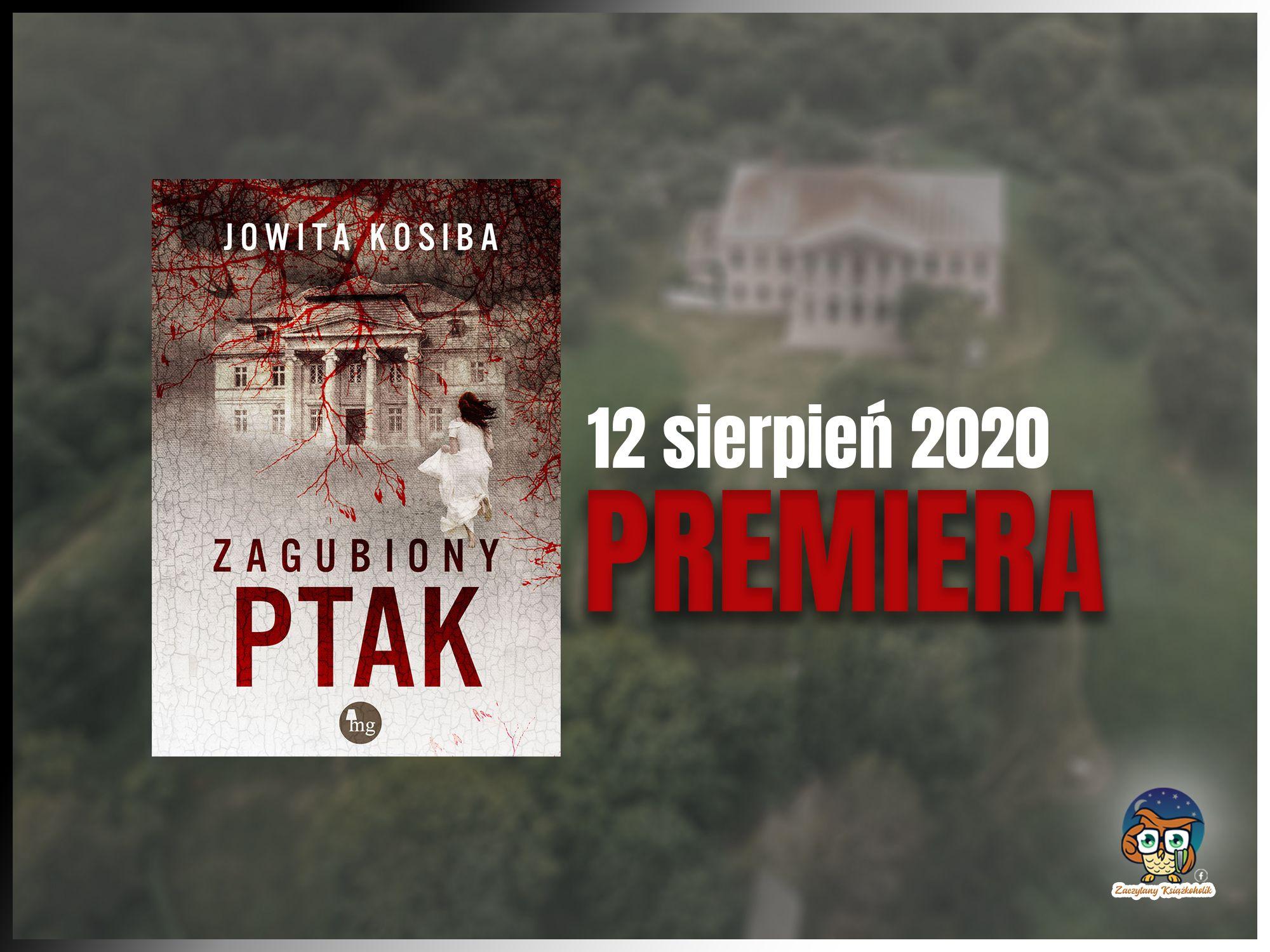 """""""Zagubiony ptak"""", Jowita Kosiba"""