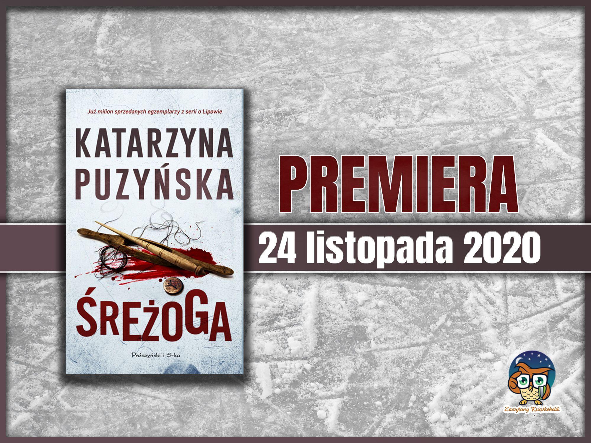 Śreżoga, Katarzyna Puzyńska, zaczytanyksiazkoholik.pl
