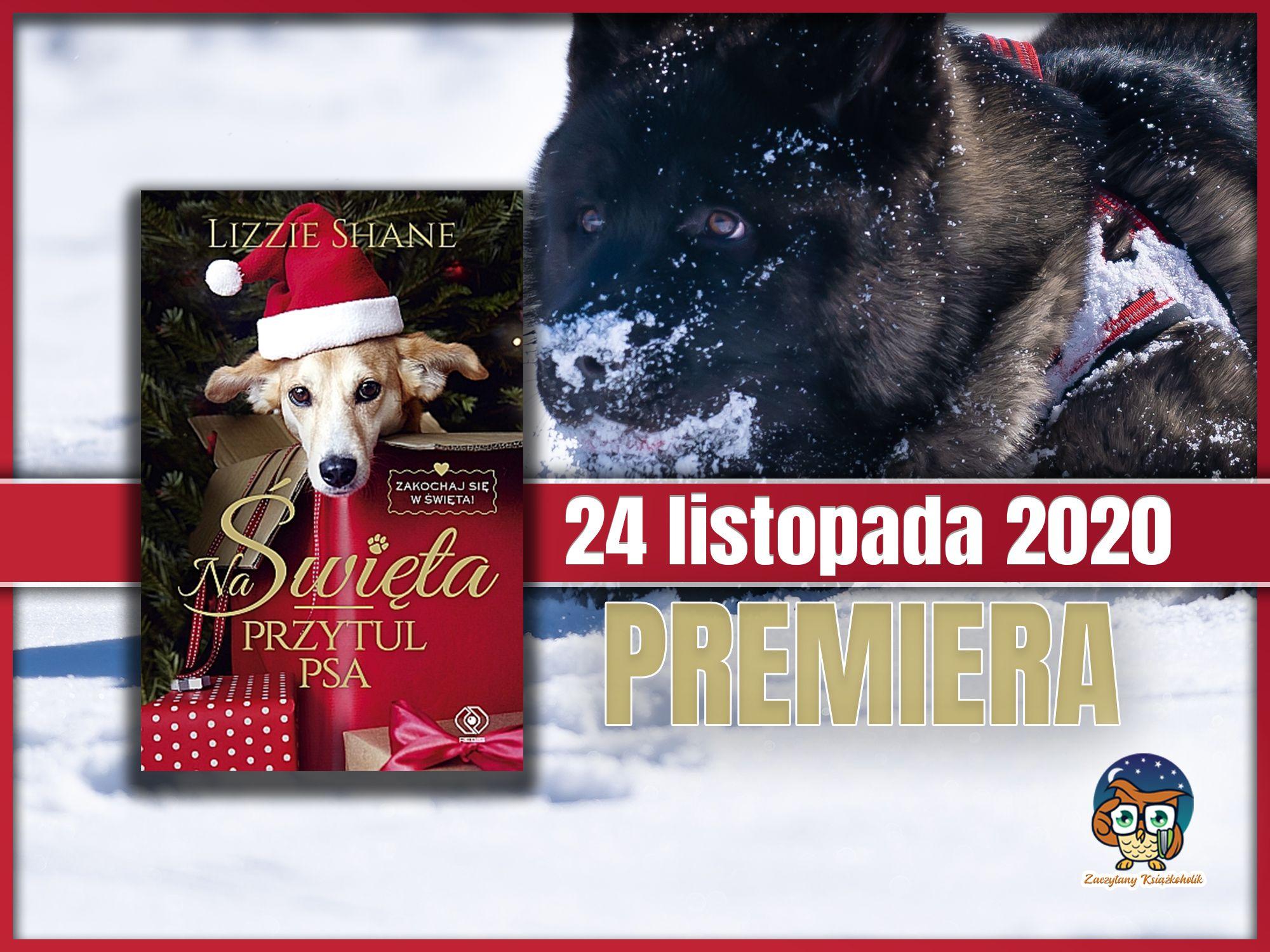 Na Święta przytul psa, Lizzie Shane, zaczytanyksiazkoholik.pl