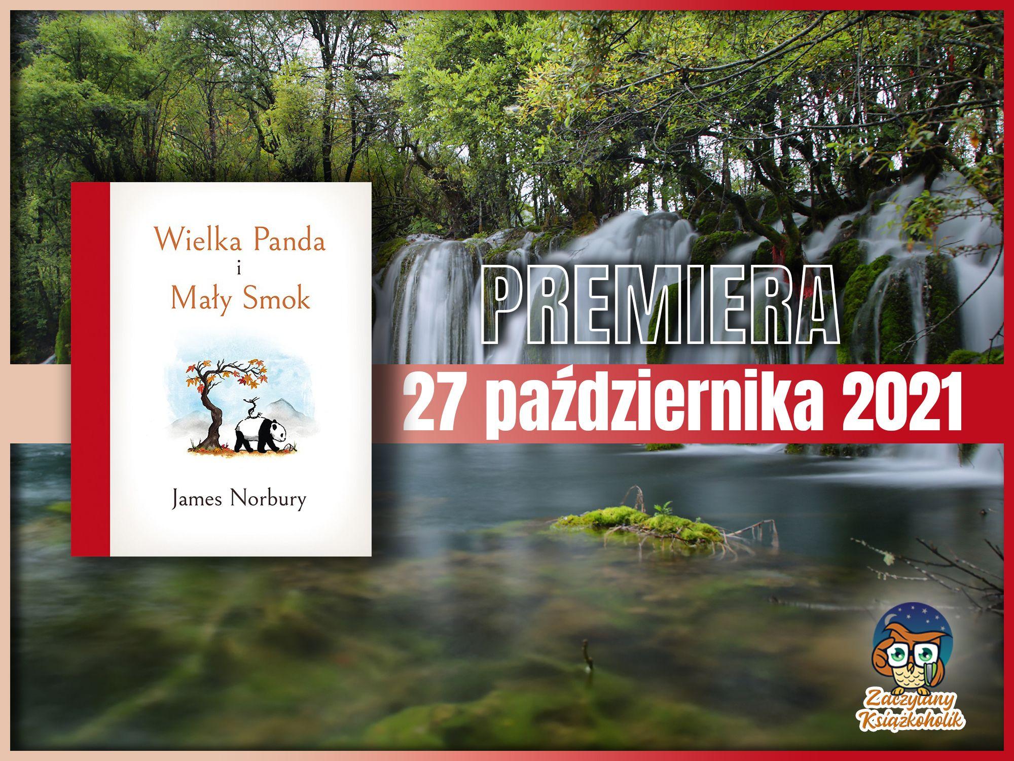 Wielka Panda i Mały Smok, James Norbury, zaczytanyksiazkoholik.pl